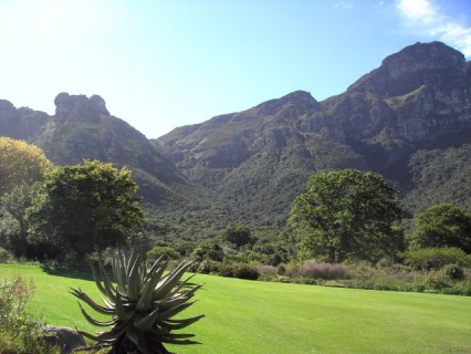 Beautiful Kirstenbosch Botanical Garden